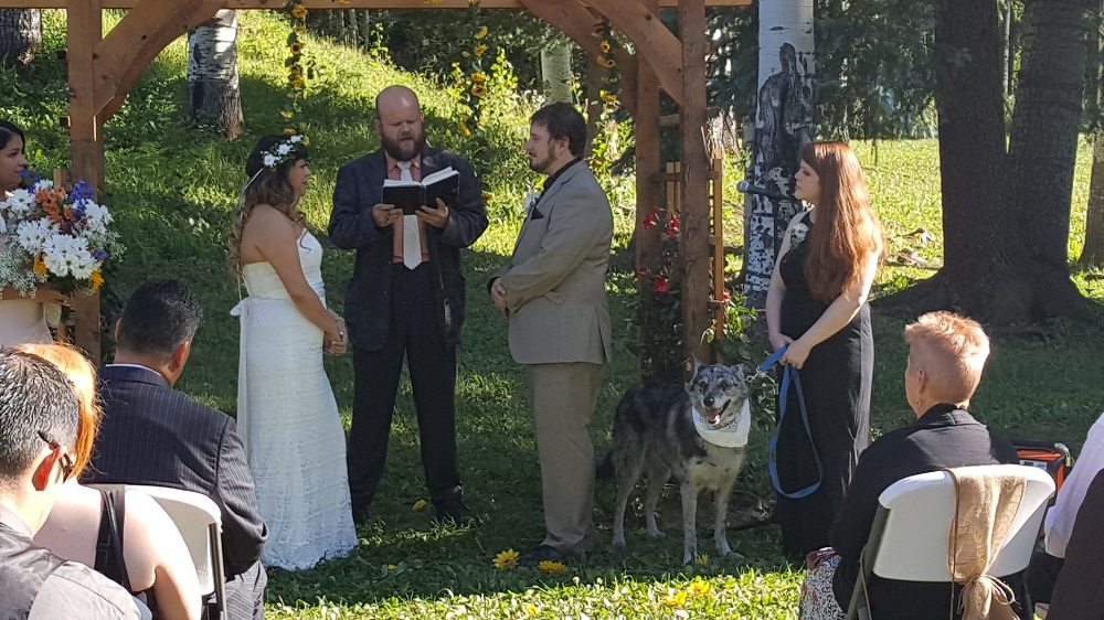 wedding in picnic area